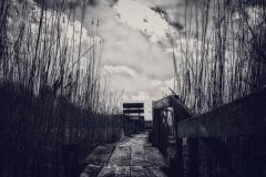 place4yu